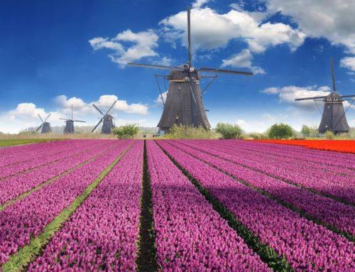 Conoce ¿Cómo Emigrar desde Chile hasta Países Bajos?, con pocos recursos